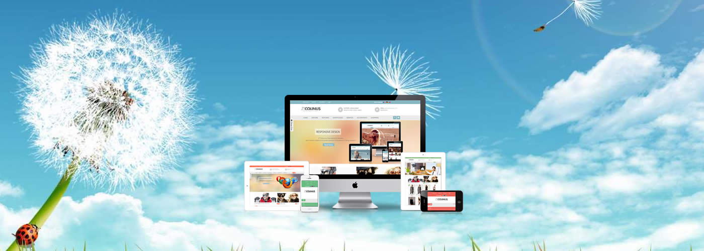 Smart Website Design